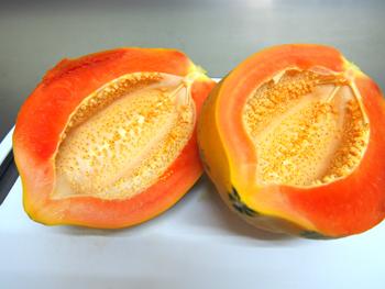 種なしフルーツパパイヤ