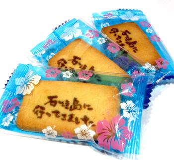 ishigakijinacooki2