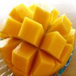 石垣島アップルマンゴー!とろけるような甘さは石垣島最高の絶品フルーツ