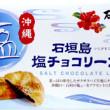 石垣島 塩チョコリーフパイ