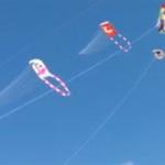 大空に凧を!石垣島新春凧揚げ大会